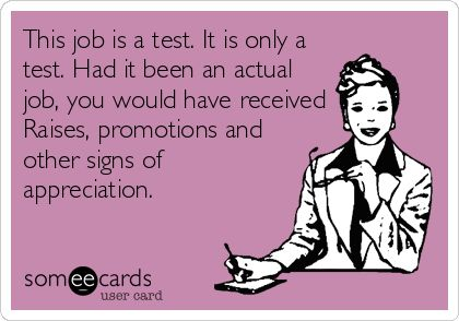 test job