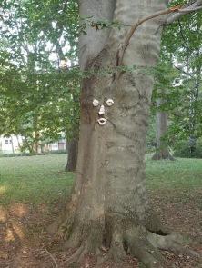 mr tree